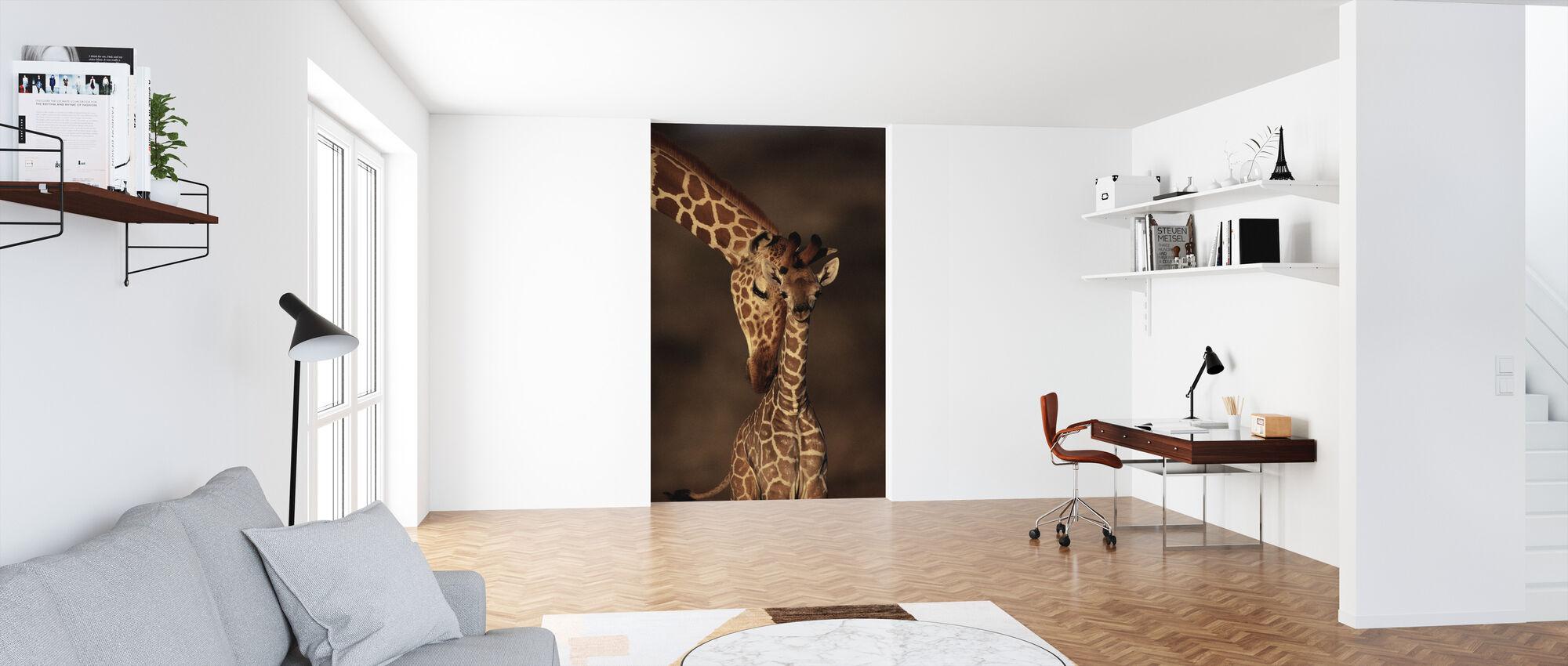 Giraffer - Tapet - Kontor