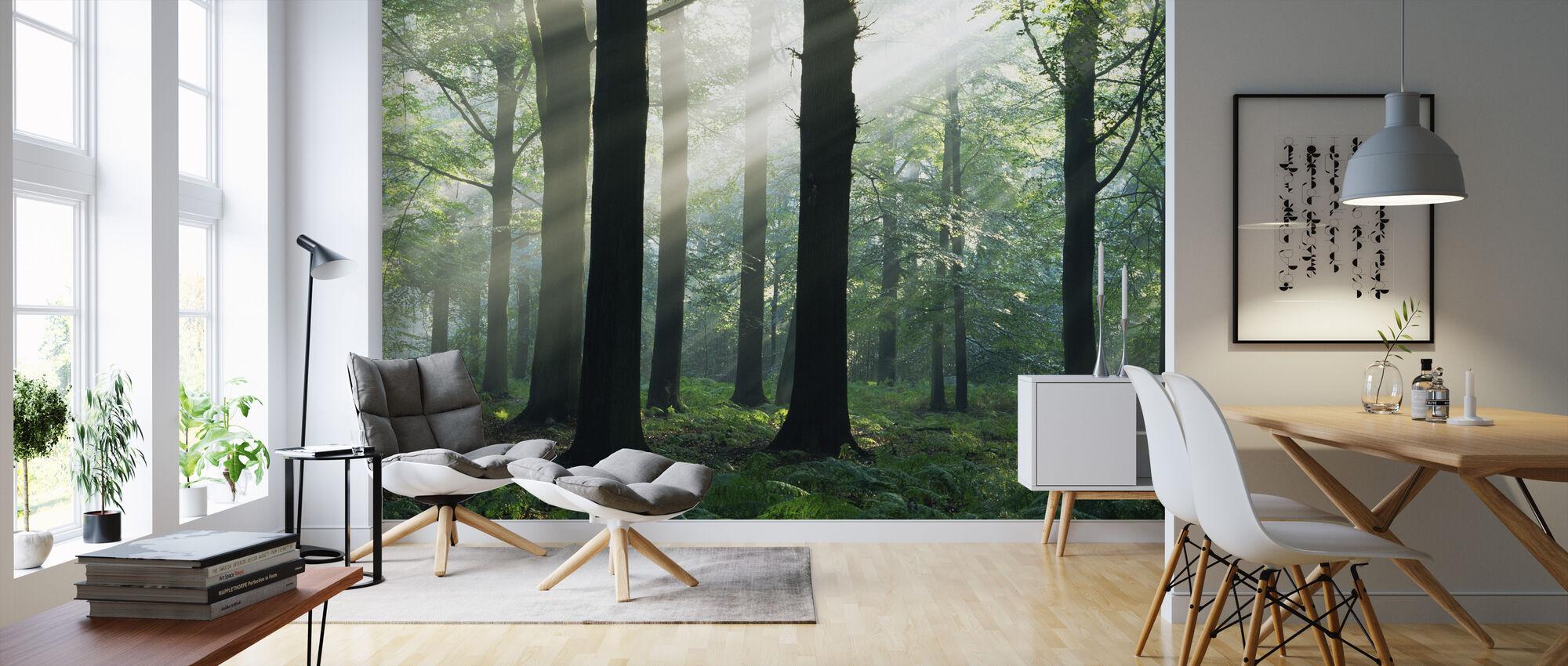 Morning Sunshine - Wallpaper - Living Room