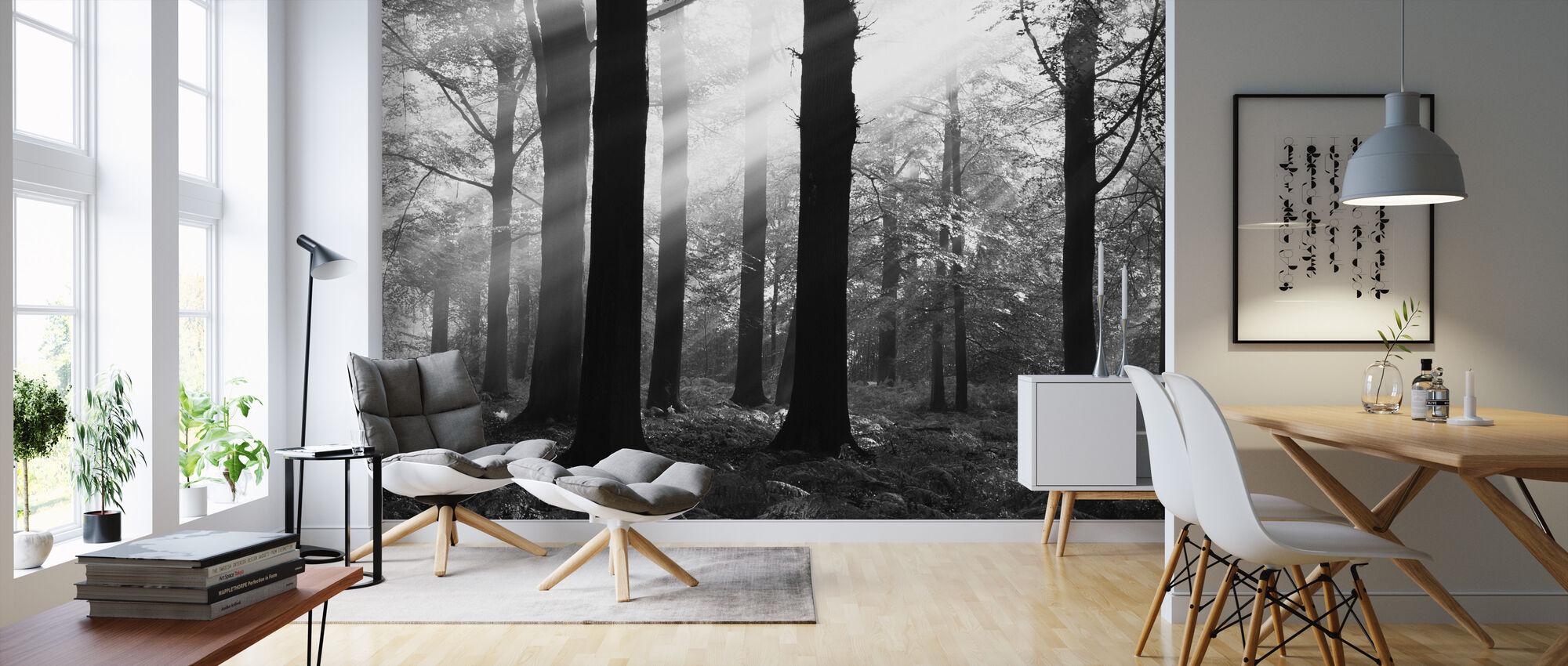 Morning Sunshine - b/w - Wallpaper - Living Room