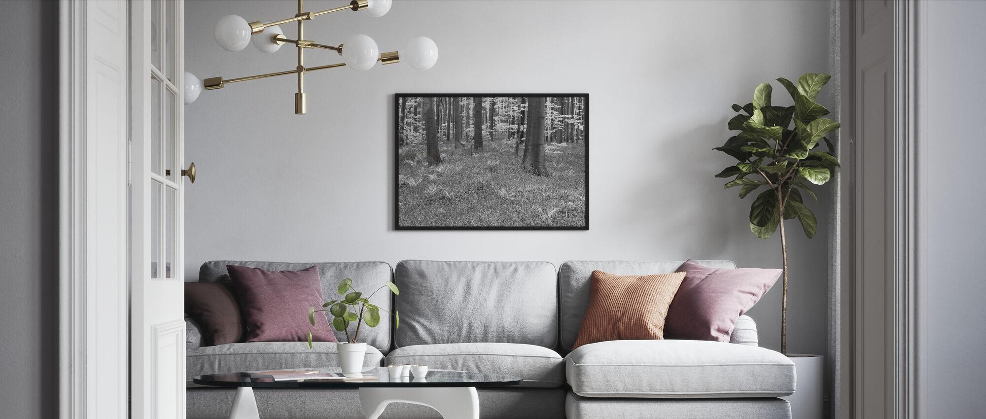 Bluebells Wood - b/w - Framed print - Living Room