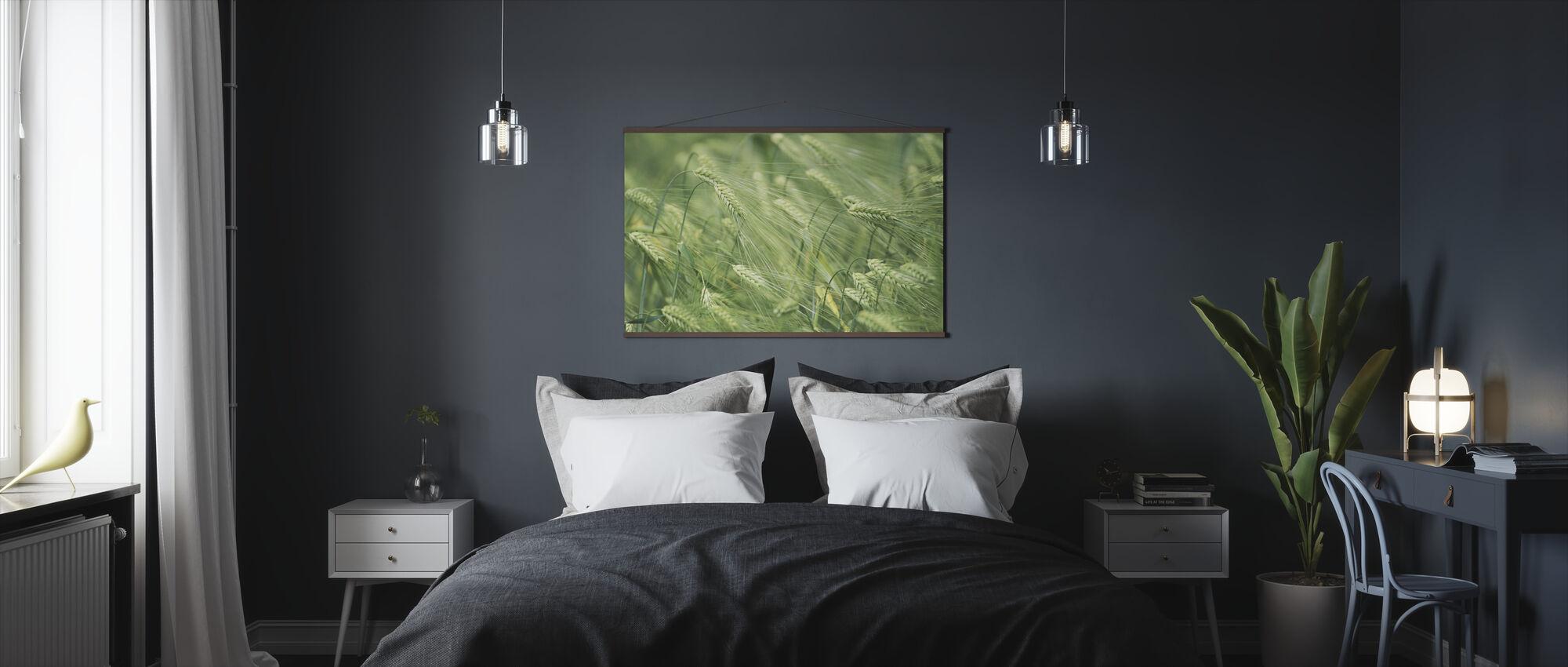 Barley Heads - Poster - Bedroom