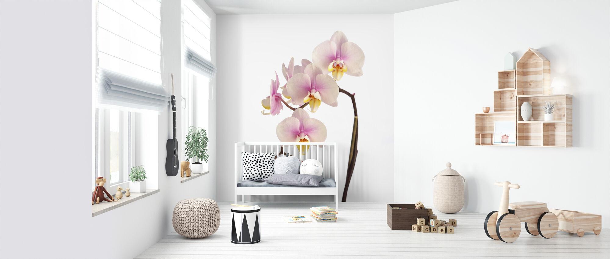 Vaaleanpunainen orkidea varsi - Tapetti - Vauvan huone
