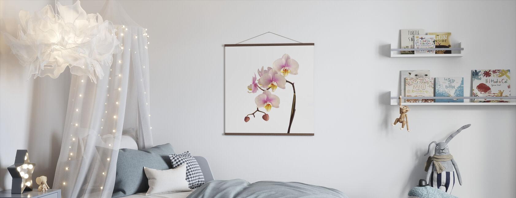Vaaleanpunainen orkidea varsi - Juliste - Lastenhuone