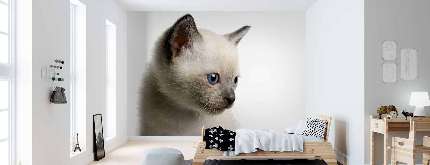 Blue Eyed Kitten - Wallpaper - Kids Room