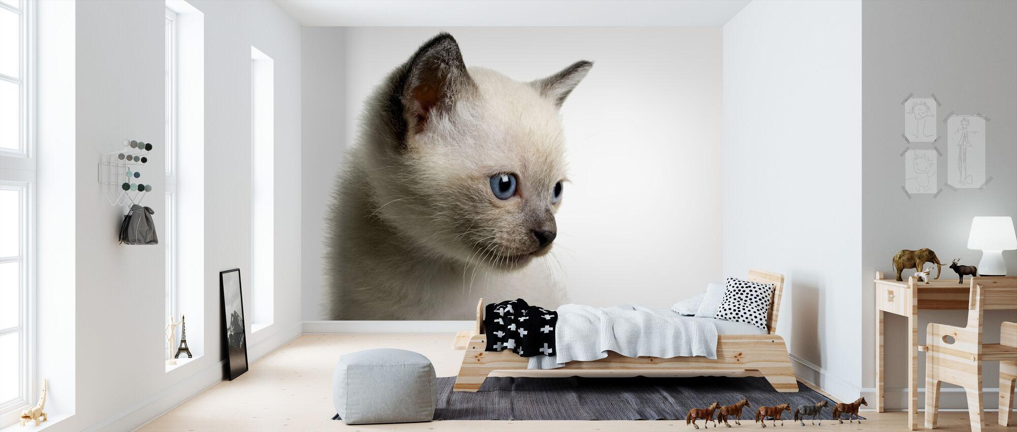 Blue Eyed Kitten - Wallpaper - Kids Room