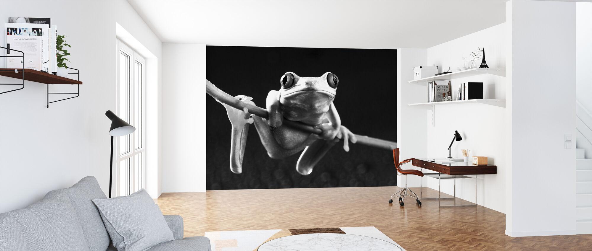 Red frog - b/w - Wallpaper - Office