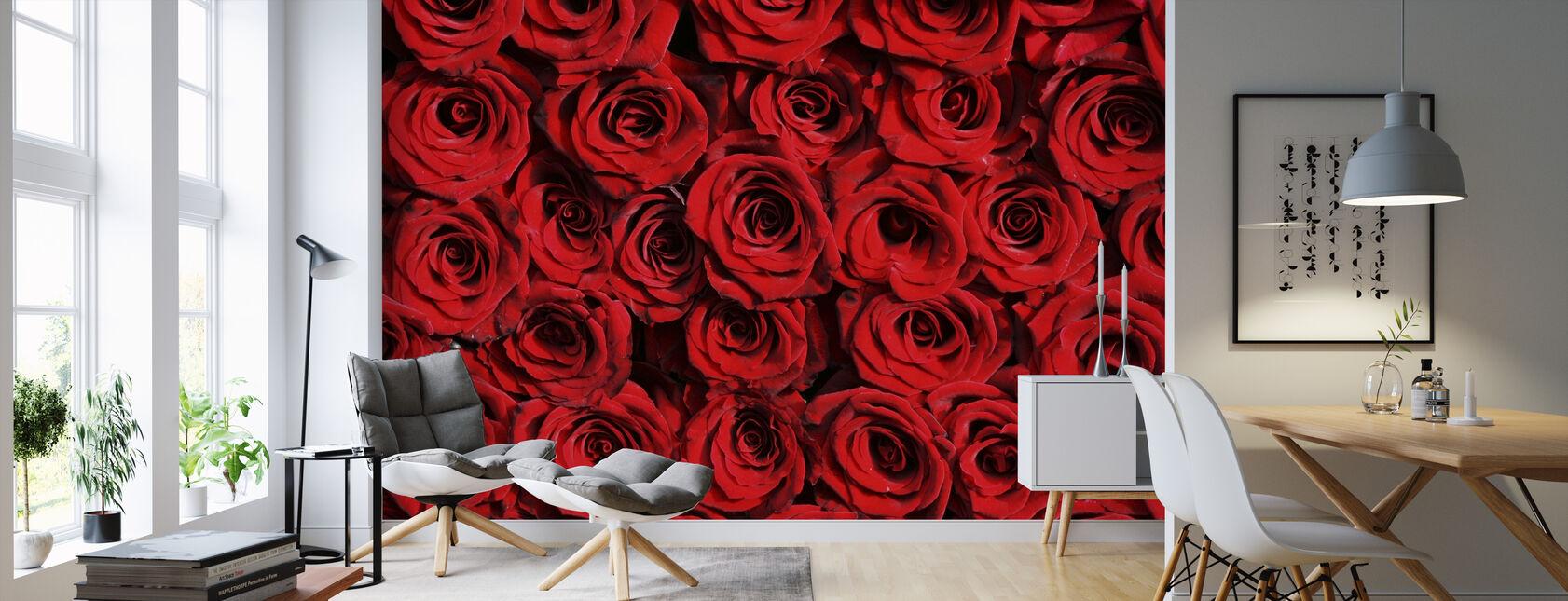 Red roses - Wallpaper - Living Room