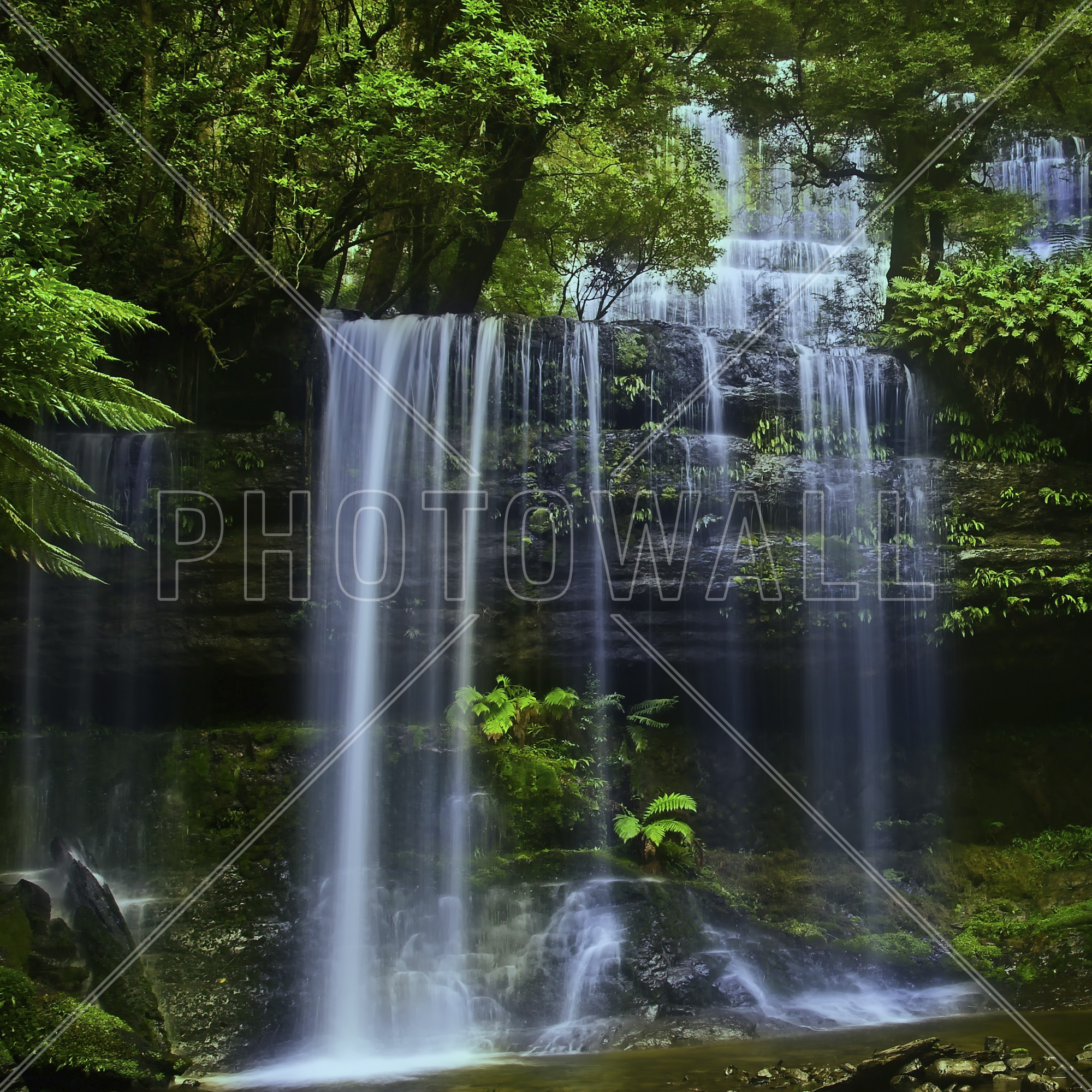 All Wall Murals And Design Wallpapers Tasmania