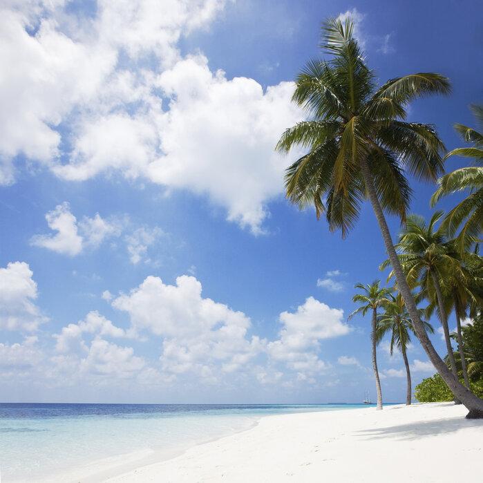 Paradise Beach - Canvastaulu