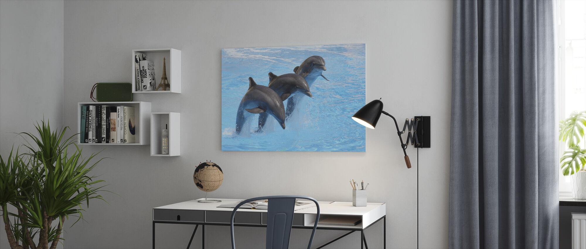 Pullonokkadelfiinit - Canvastaulu - Toimisto
