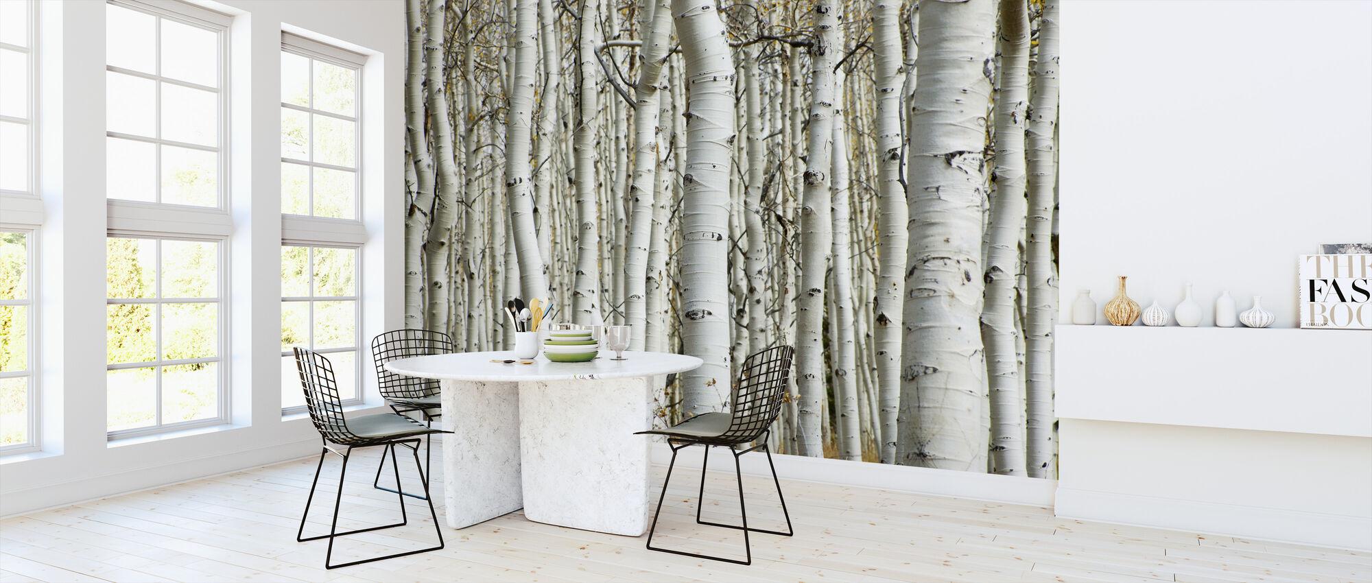 Aspen Forest - Wallpaper - Kitchen