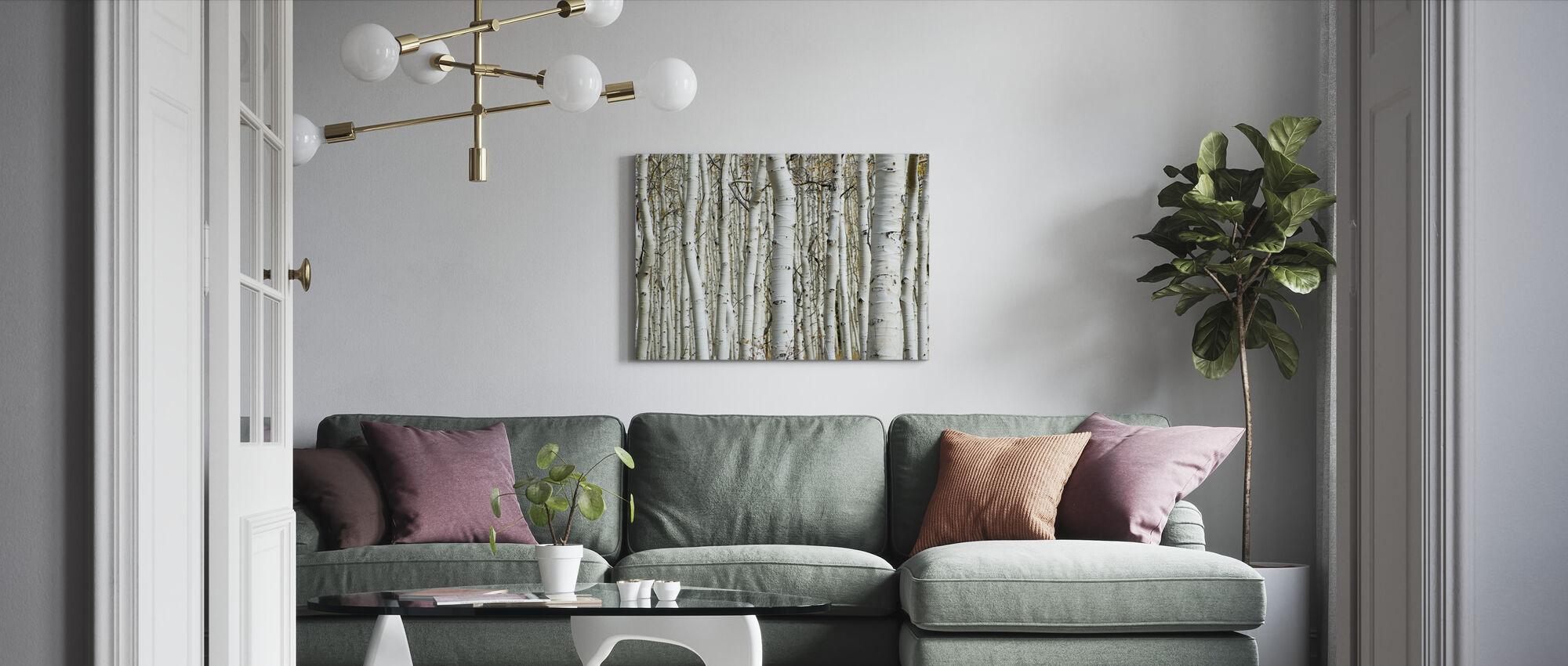 Aspen skog - Lerretsbilde - Stue