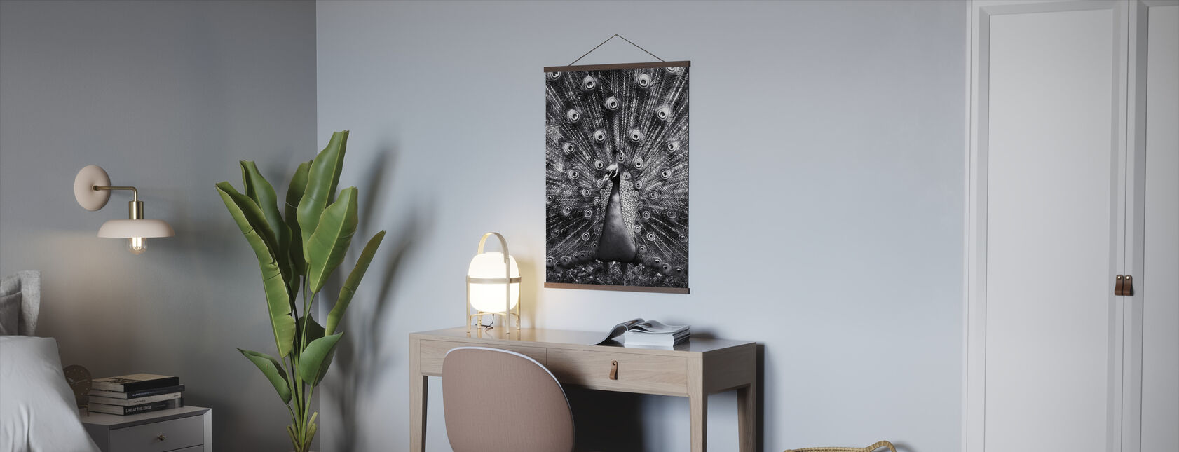 Peacock - Poster - Office
