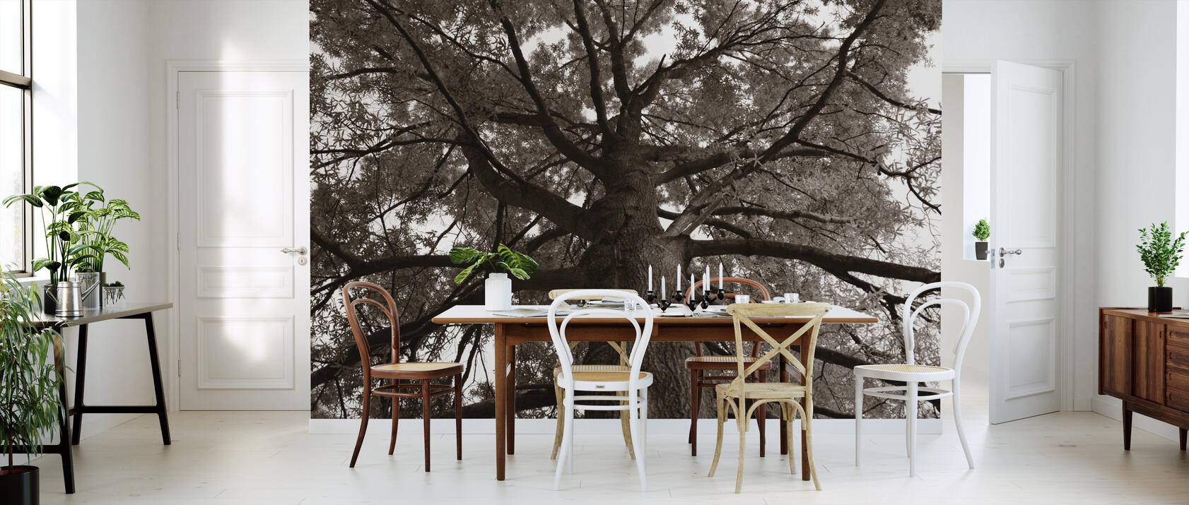 tall oak sepia fototapete nach ma photowall. Black Bedroom Furniture Sets. Home Design Ideas