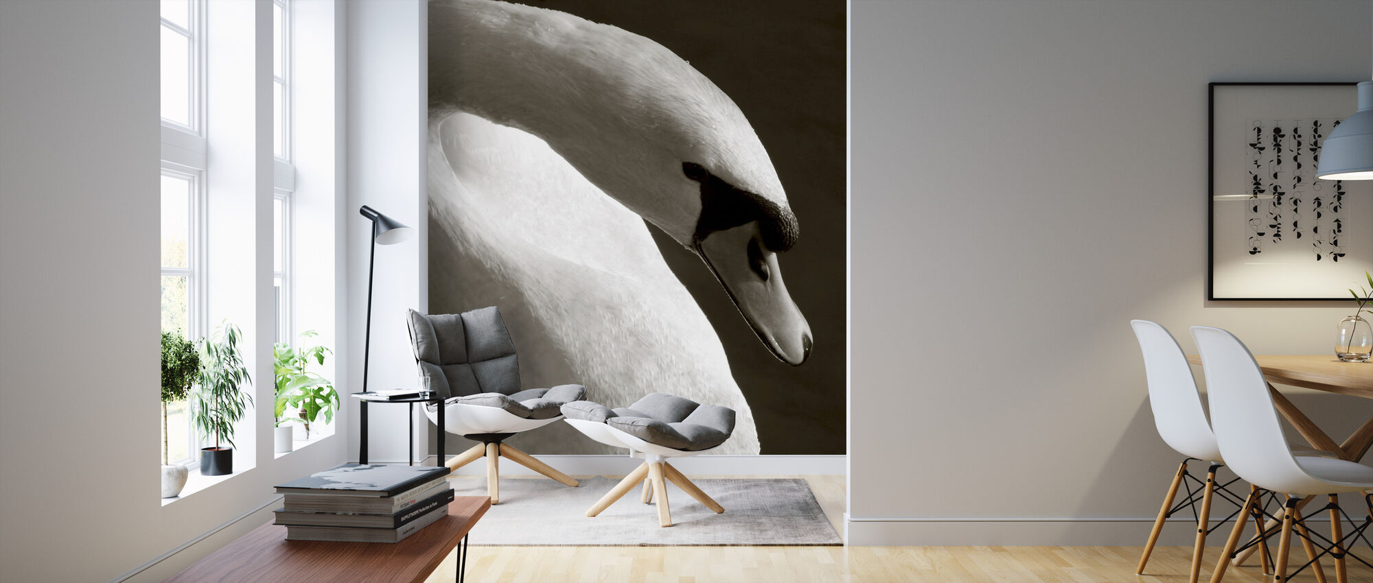 swan fototapete nach ma photowall. Black Bedroom Furniture Sets. Home Design Ideas