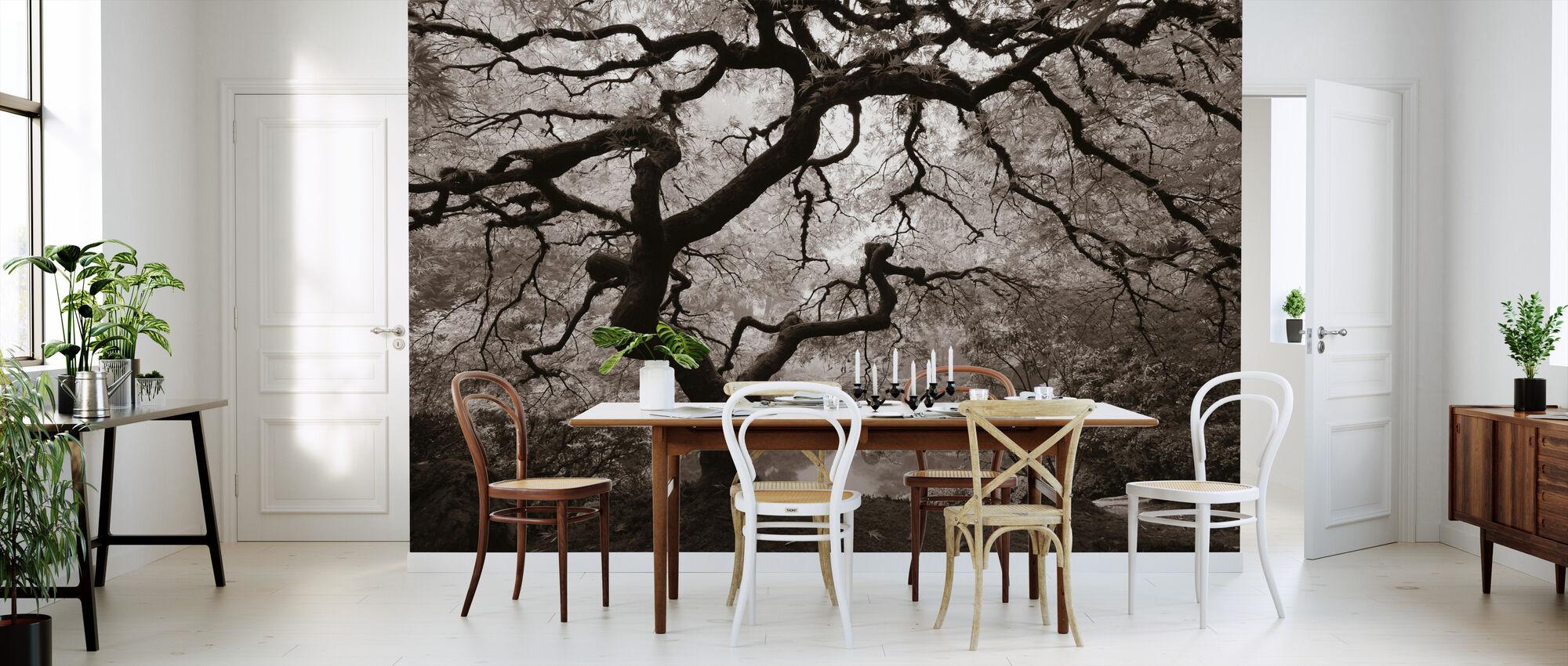 Autumn Maple - Wallpaper - Kitchen