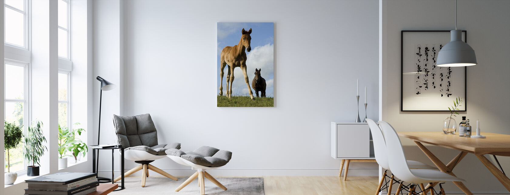 Young Foal - Canvas print - Living Room
