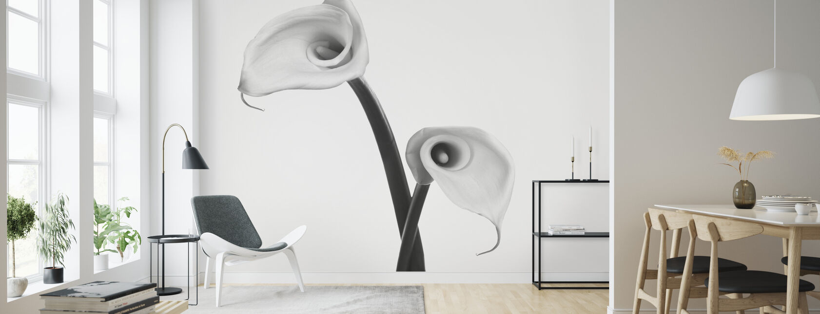 Calla Lily - Wallpaper - Living Room