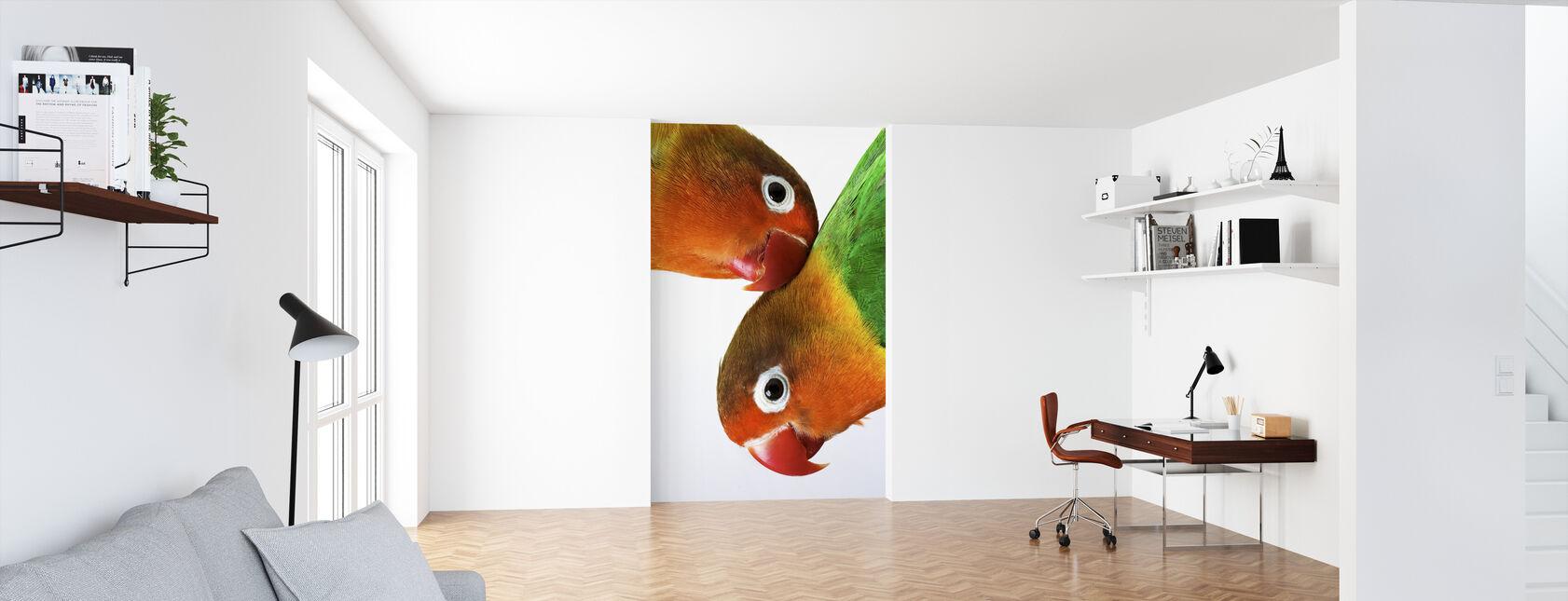 Pair of Lovebirds - Wallpaper - Office