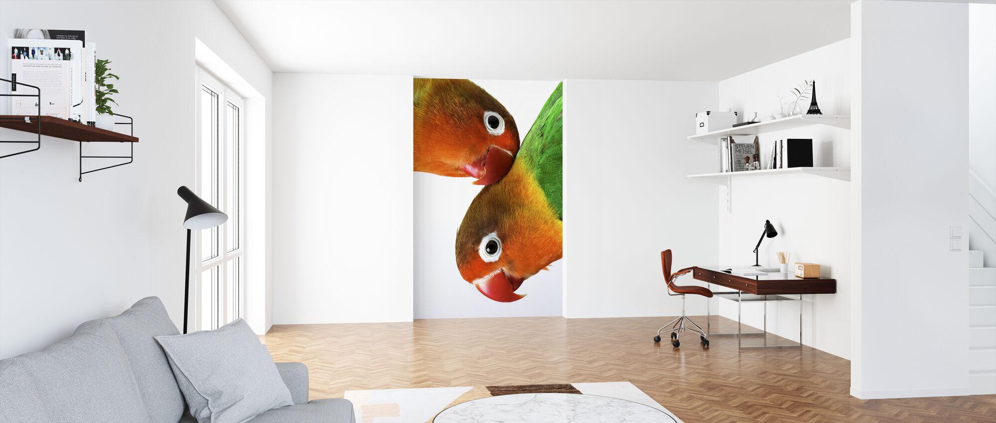 Par de tortolitos - Papel pintado - Oficina