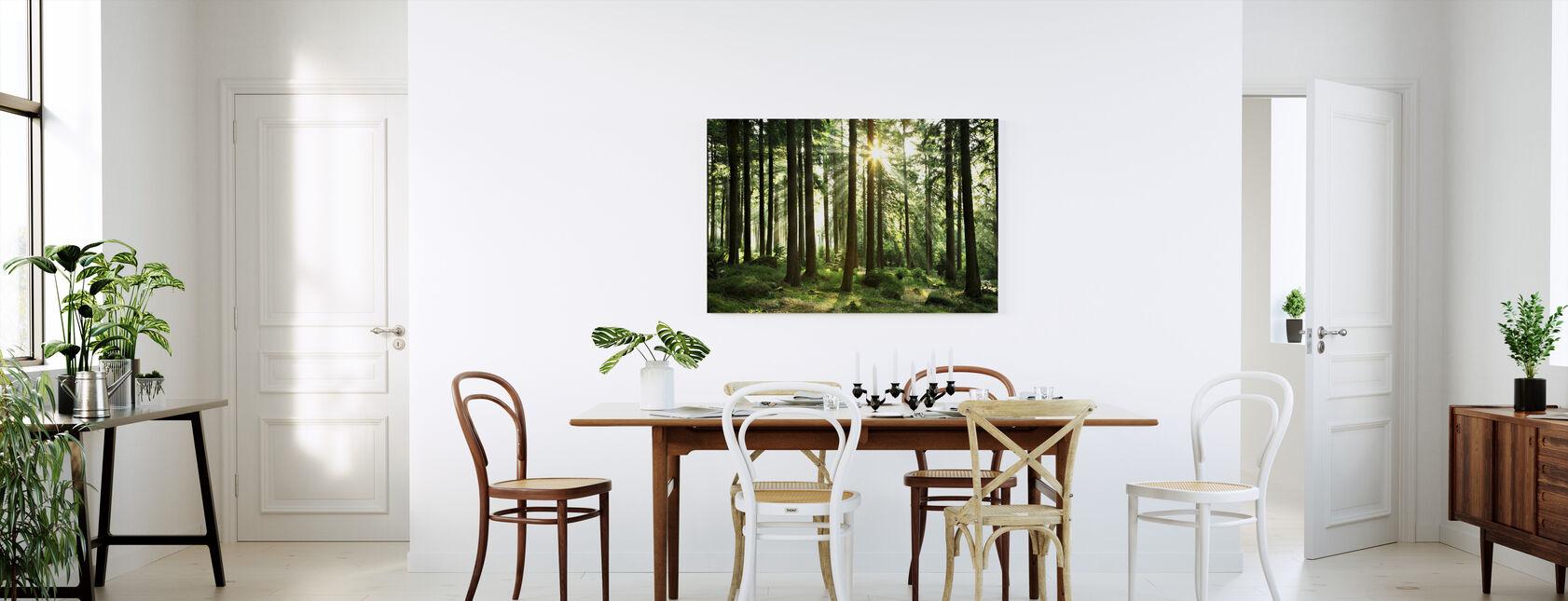 Solstrålen gennem træer - Billede på lærred - Køkken