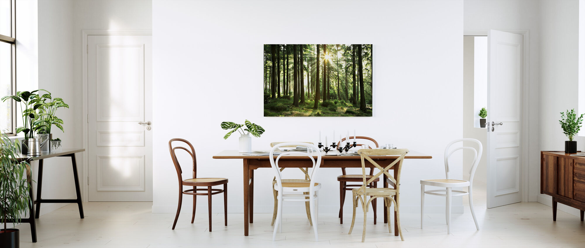 Sunbeam through Trees - Canvas print - Kitchen
