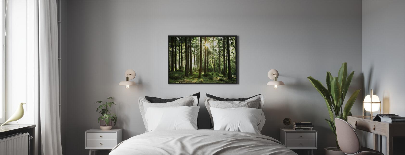 Solstråle gjennom Trær - Innrammet bilde - Soverom