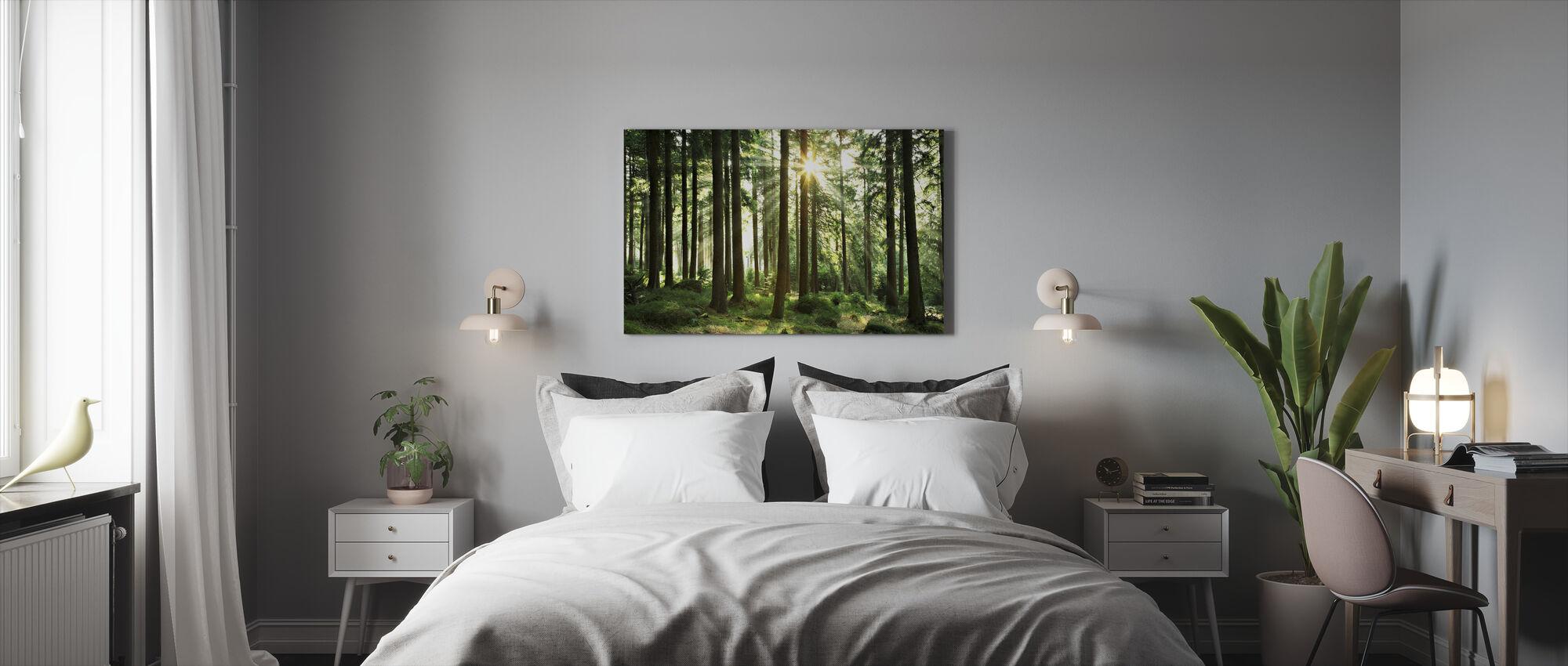 Solstråle gjennom Trær - Lerretsbilde - Soverom