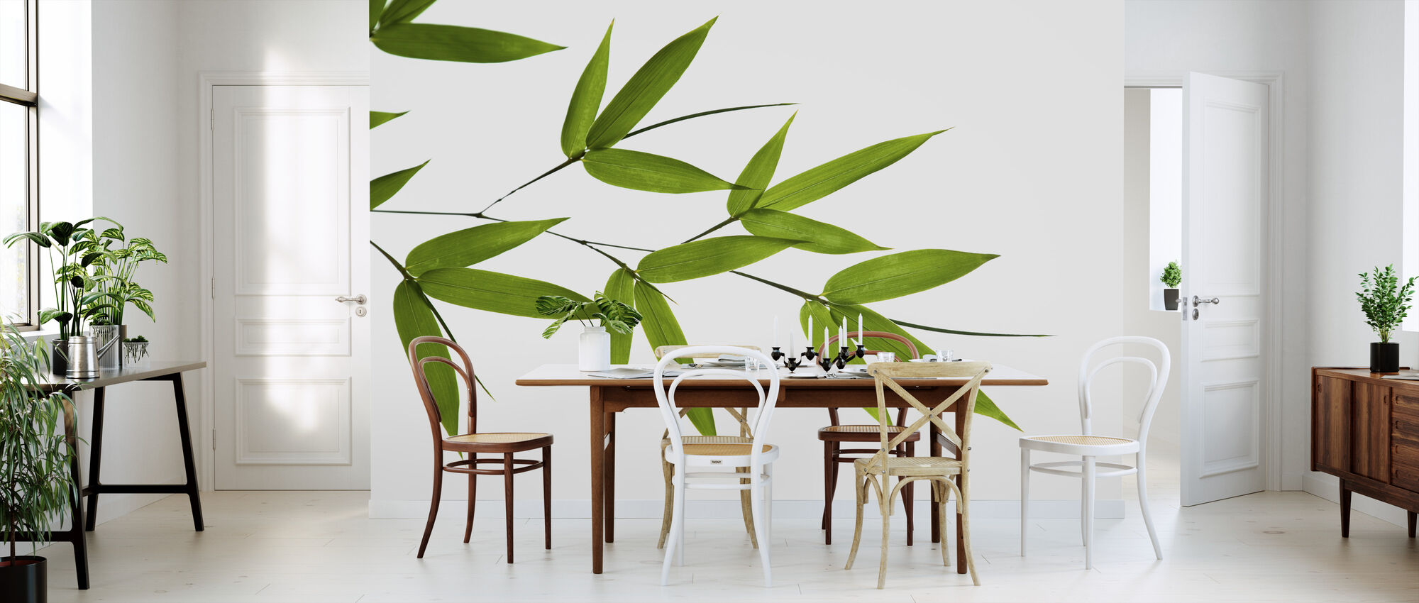 Bamboo Leaves - Wallpaper - Kitchen