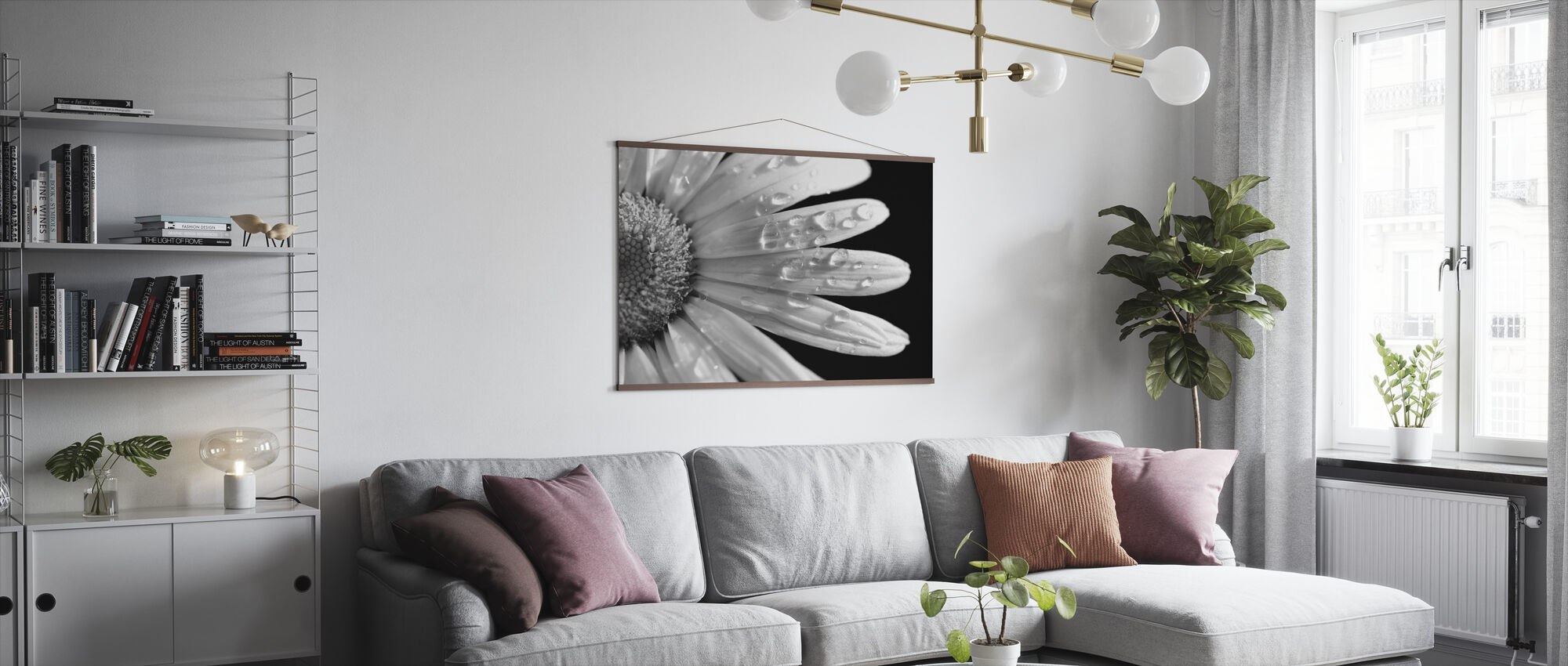 Daisy Close up - Poster - Living Room