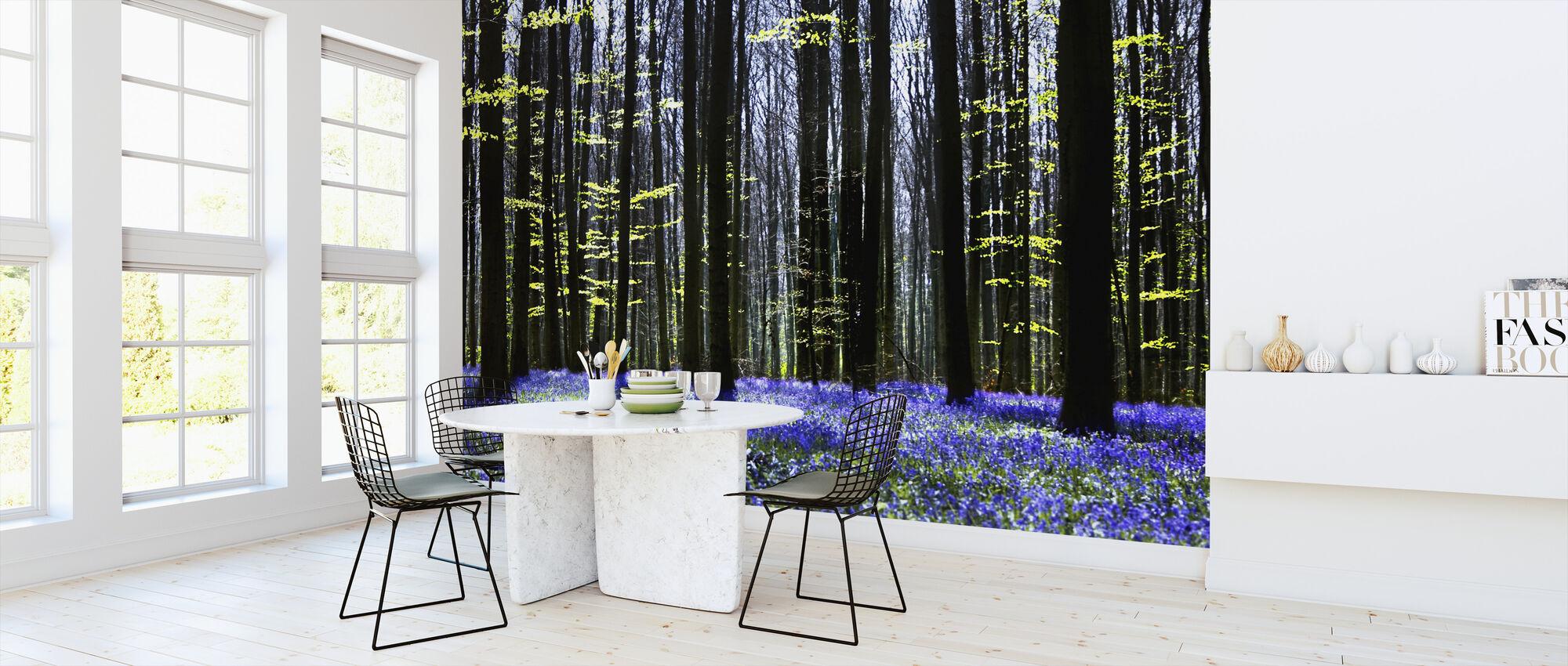Dunkler Baum und Bluebells - Tapete - Küchen
