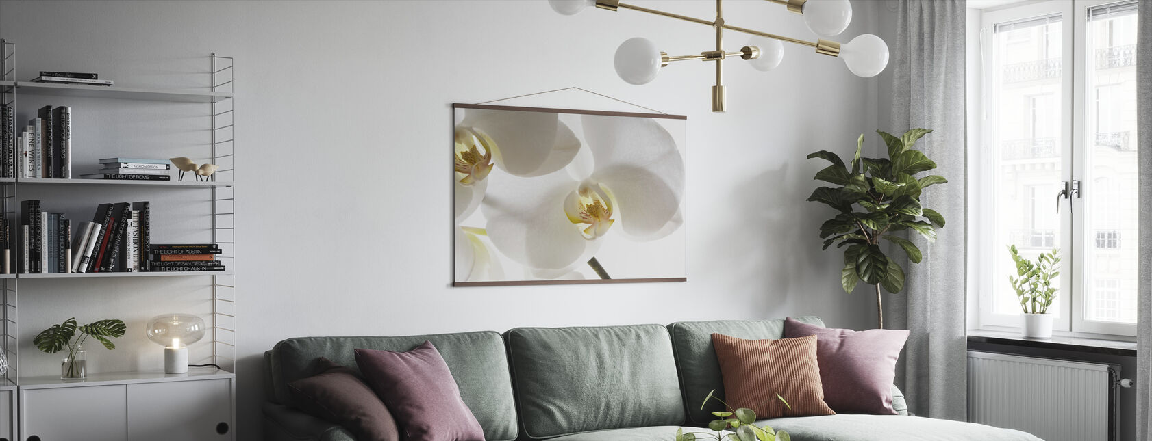 White Orchids - Poster - Living Room