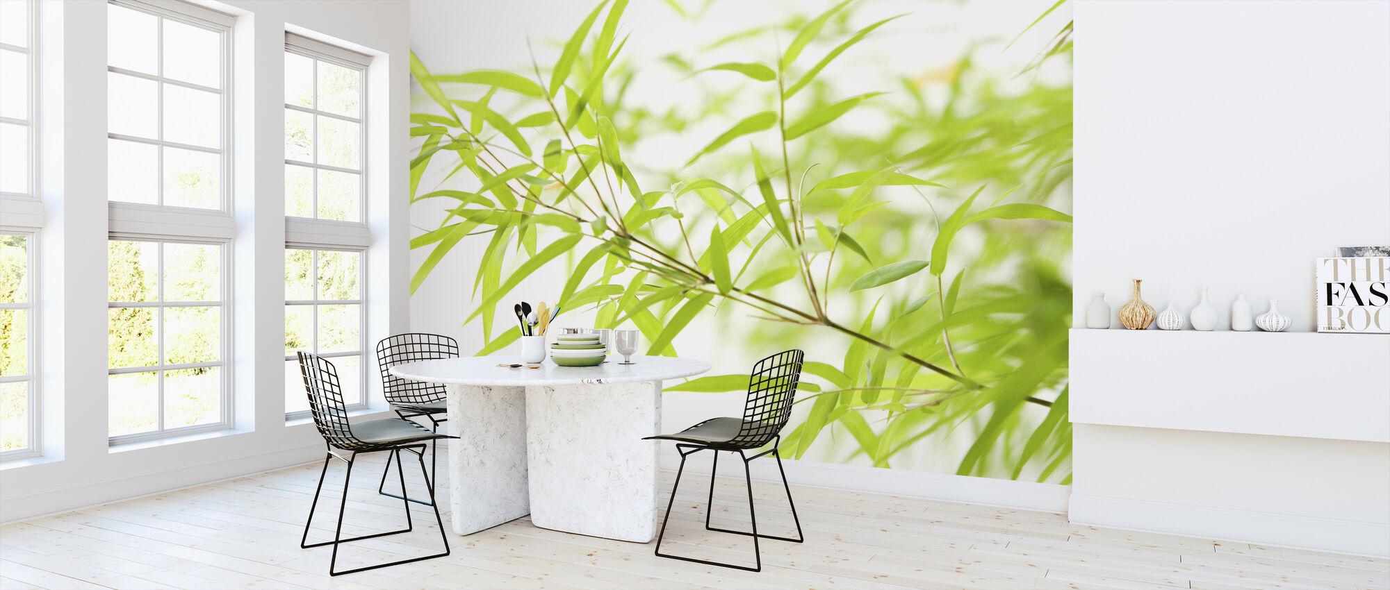 Miniature bambus - Tapet - Køkken