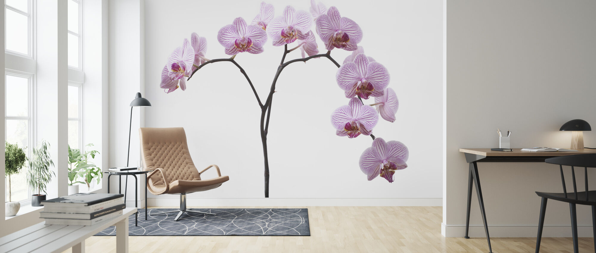 Pink Orchids - Wallpaper - Living Room