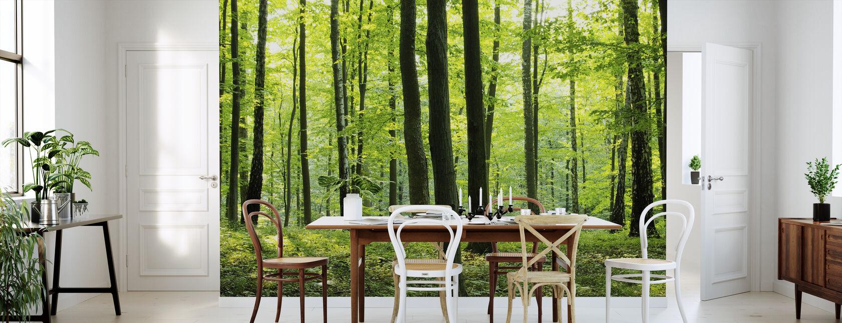 Skove og skovomr der fototapeter af h j kvalitet photowall for Area 604