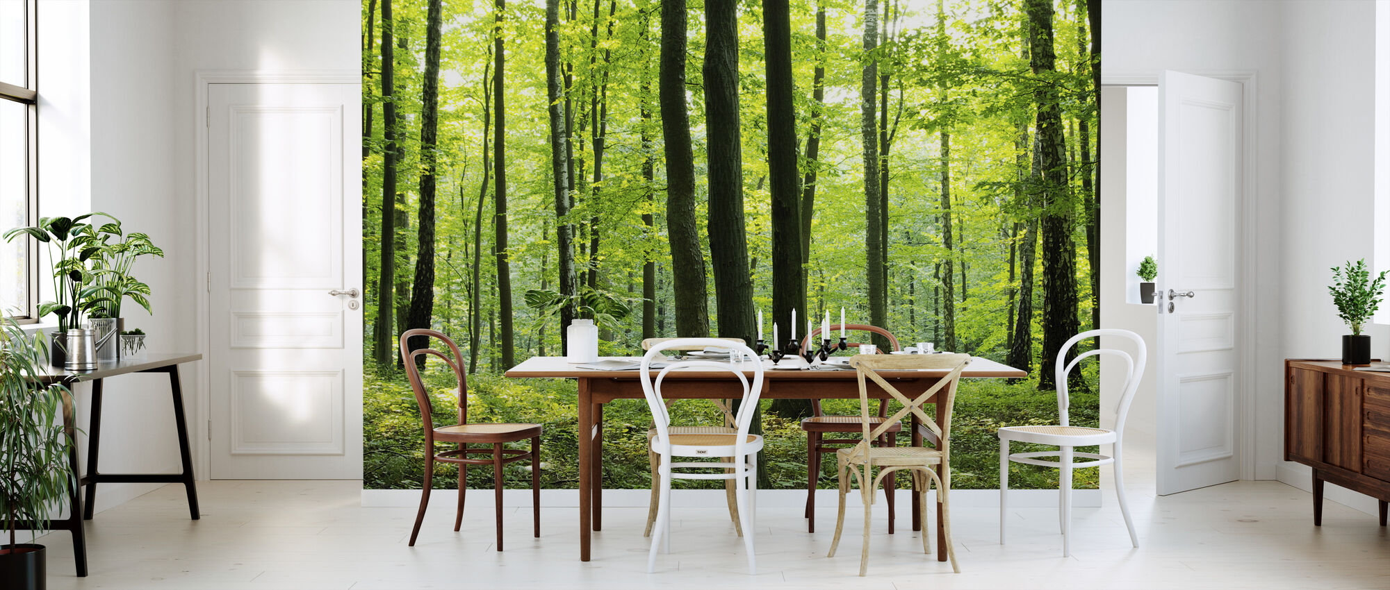 rural forest fototapete nach ma photowall. Black Bedroom Furniture Sets. Home Design Ideas