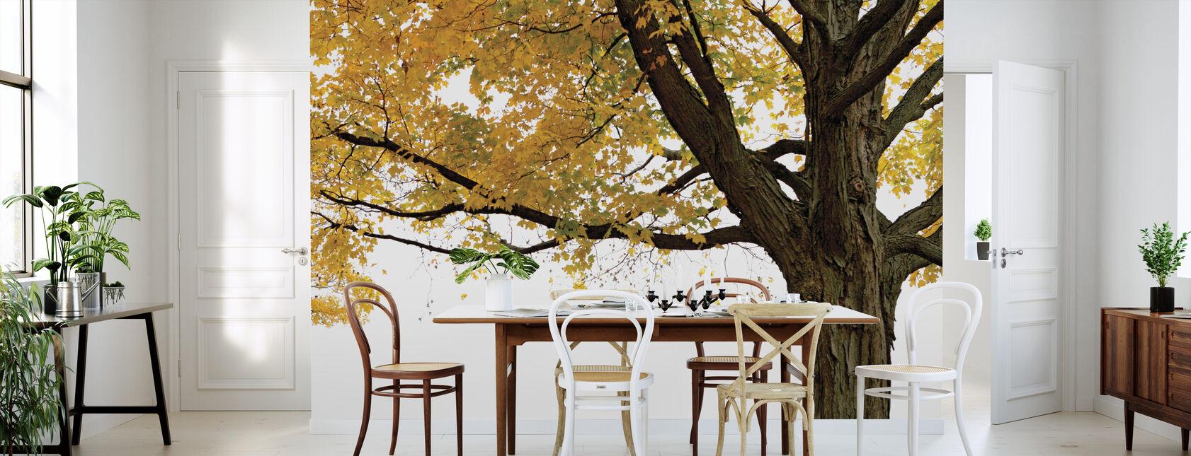 Herfst Esdoorn - Behang - Keuken