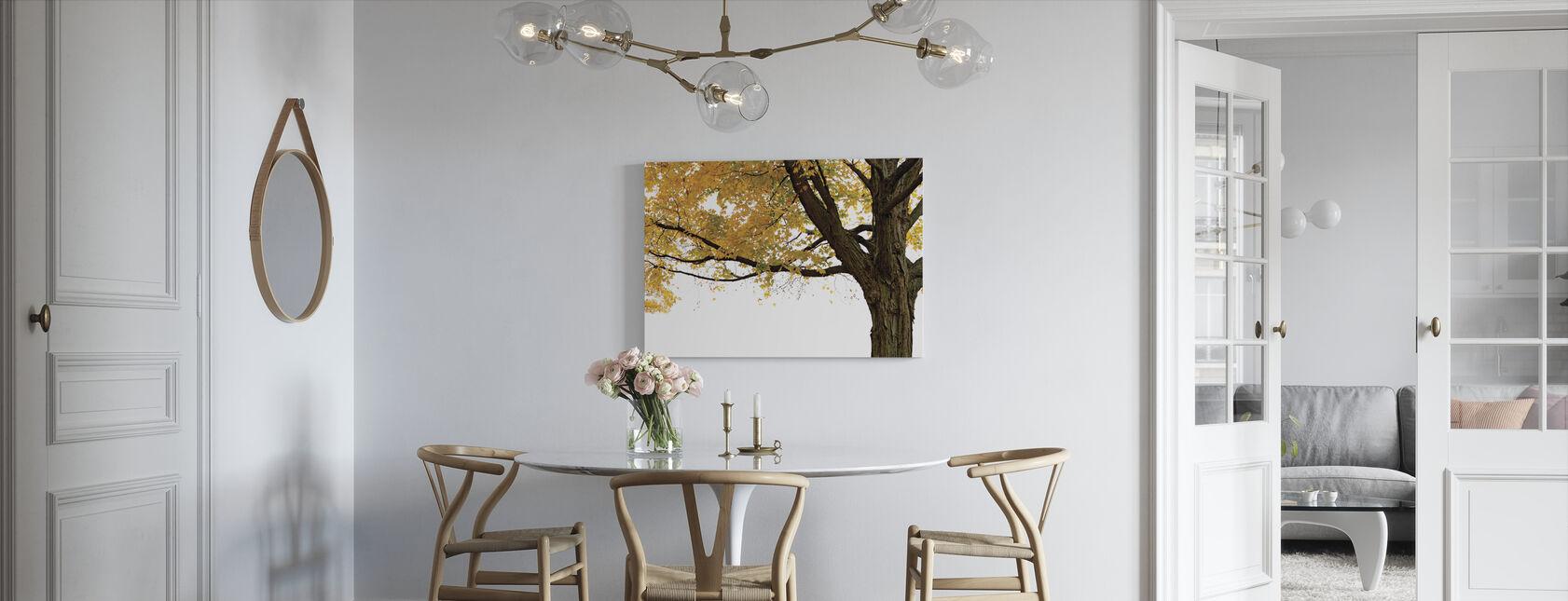Autumn Maple Tree - Canvas print - Kitchen