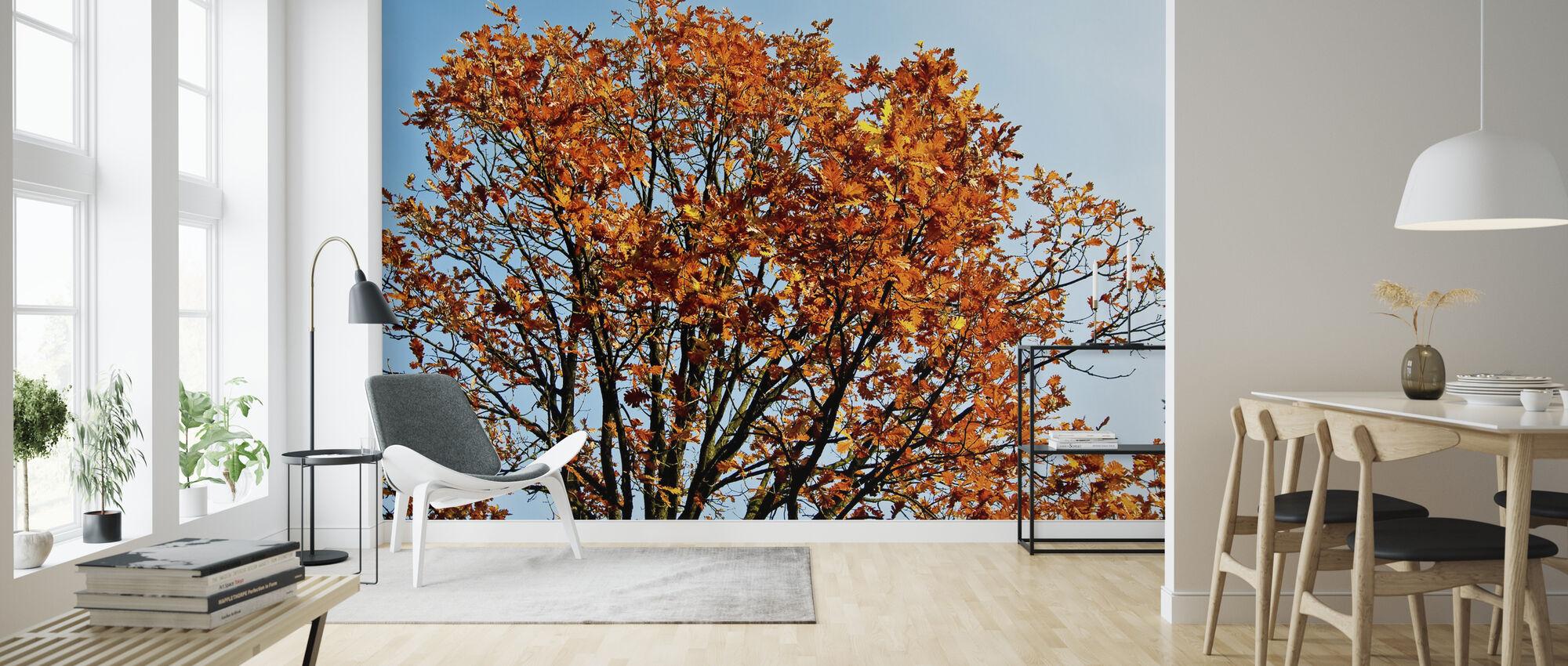 Höstträd och blå himmel - Tapet - Vardagsrum