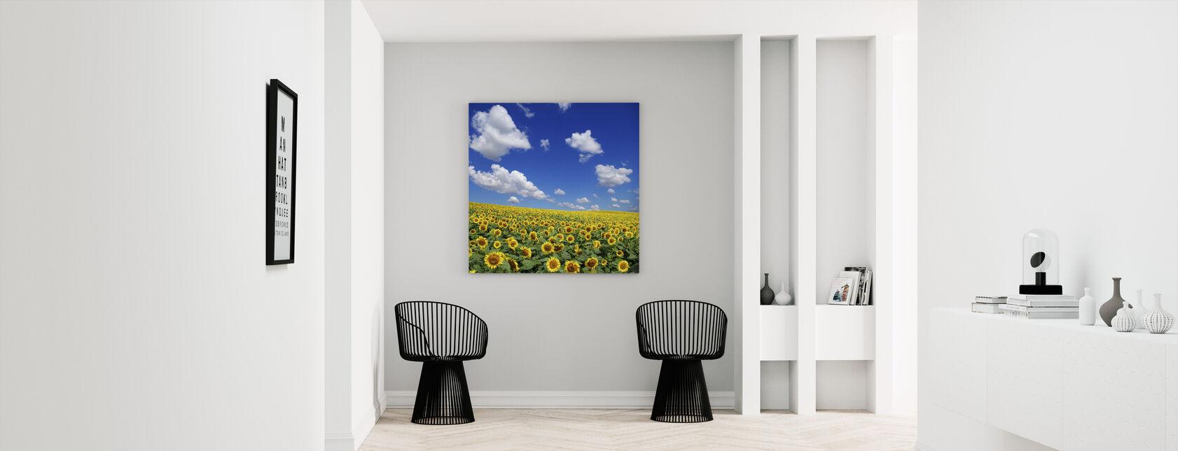Sunflower Field - Canvas print - Hallway