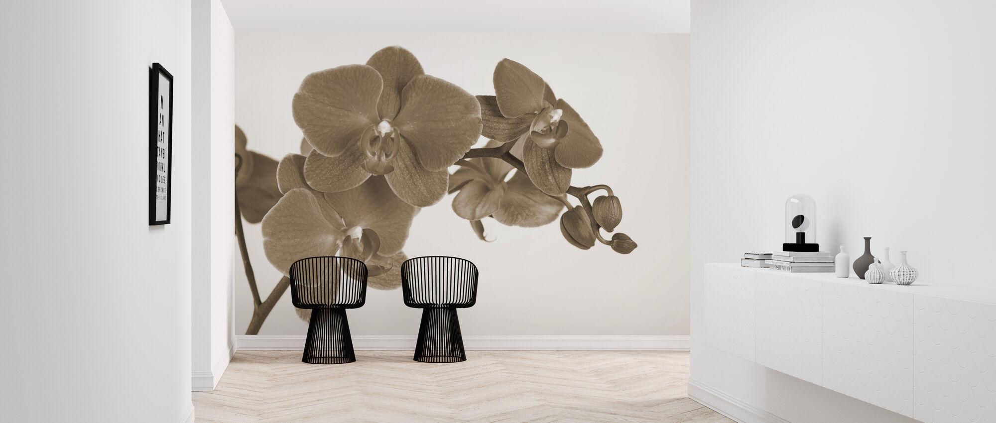 Orchidee - White - Wallpaper - Hallway