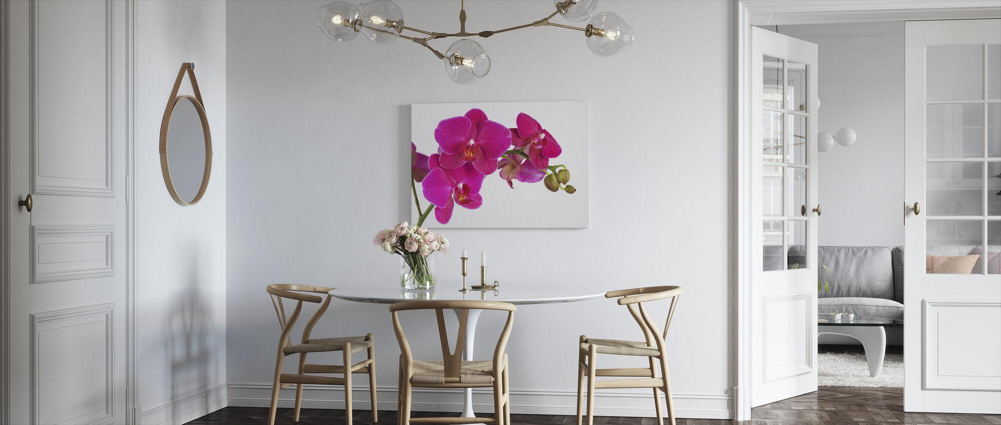 Orchidee - White Background - Canvas print - Kitchen