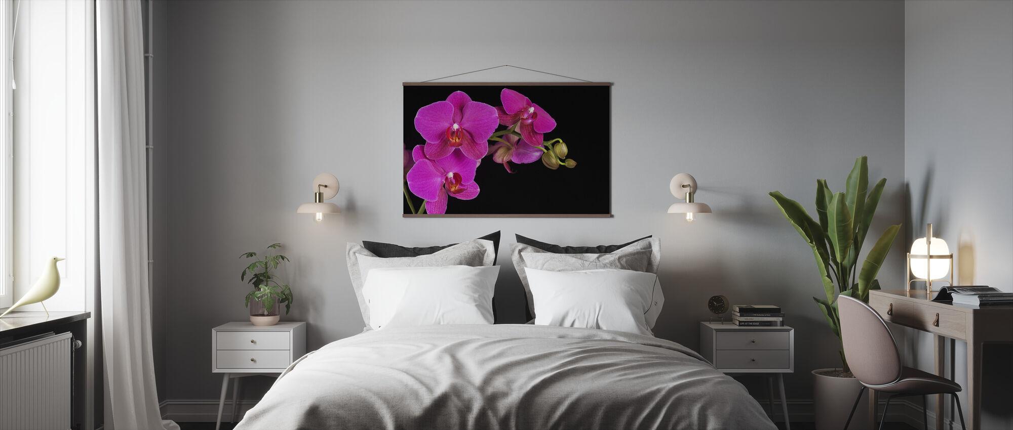 Orchidee -Czarny - Plakat - Sypialnia