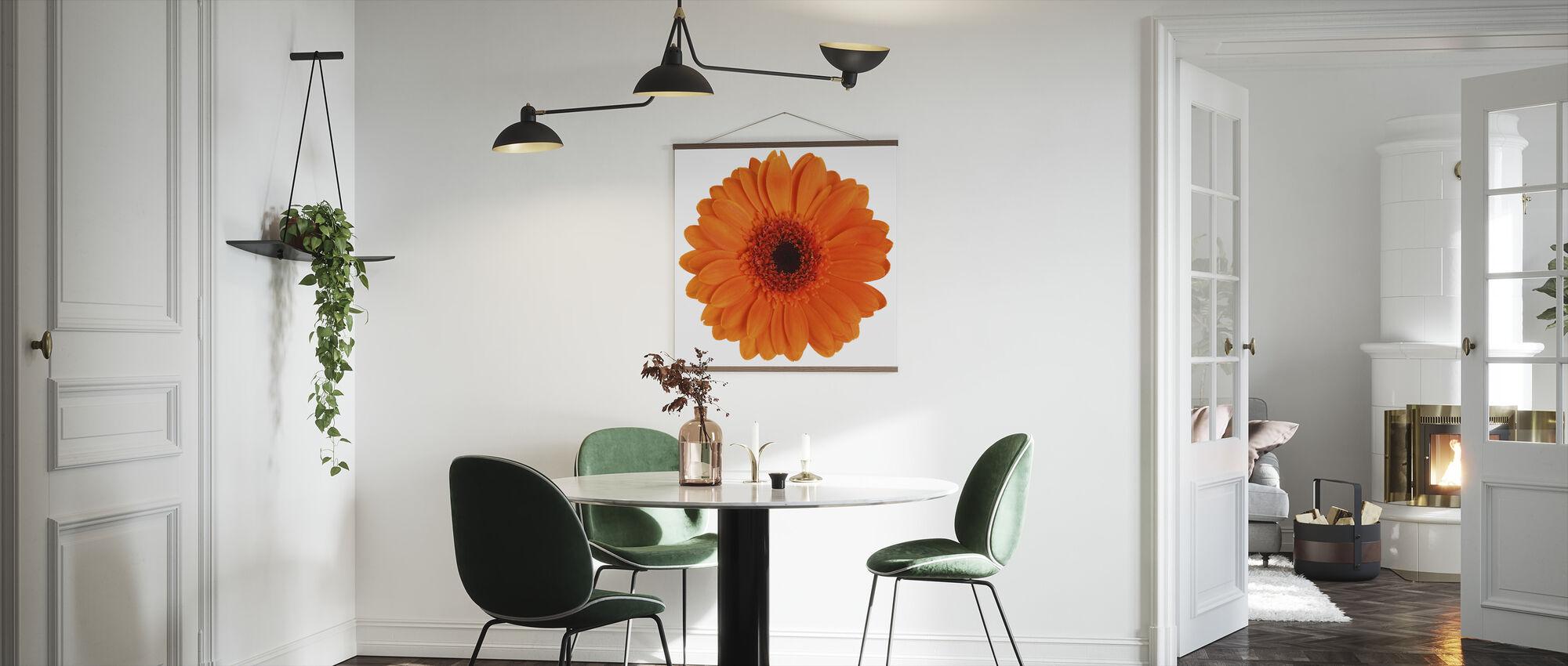 Orange Gerbera - White - Poster - Kitchen