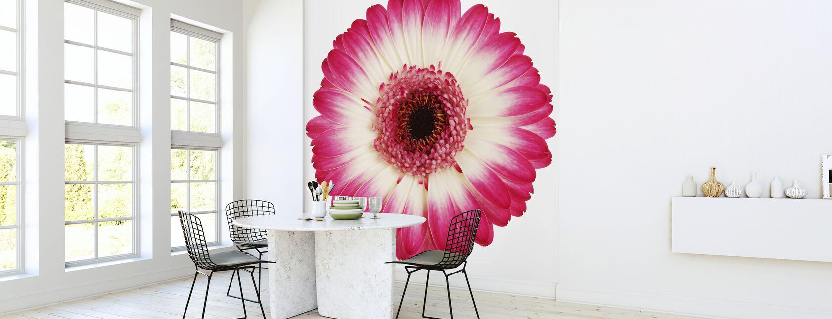 Pink Gerbera Dark - Wallpaper - Kitchen