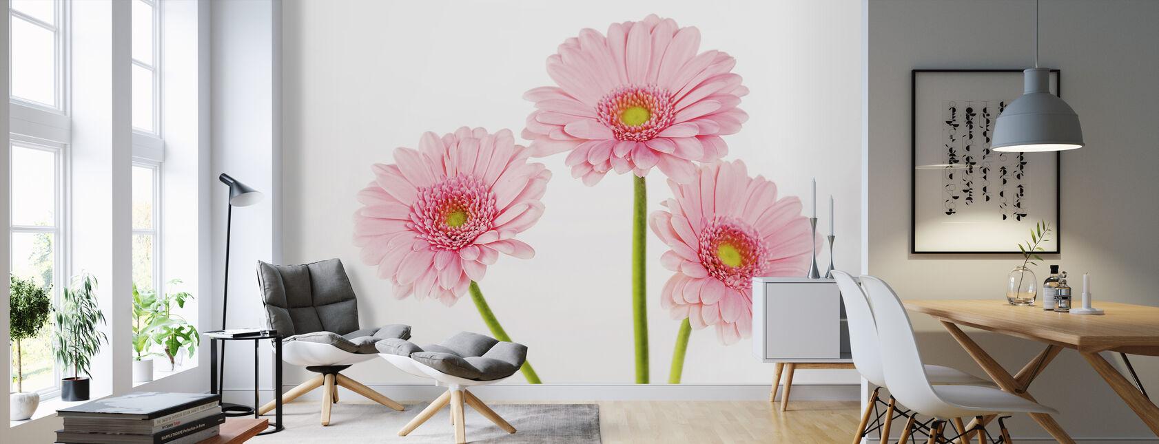 Tre Rosa Gerbera - Tapet - Vardagsrum
