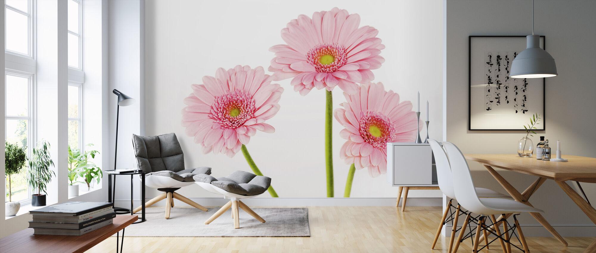 Three Pink Gerbera - Wallpaper - Living Room