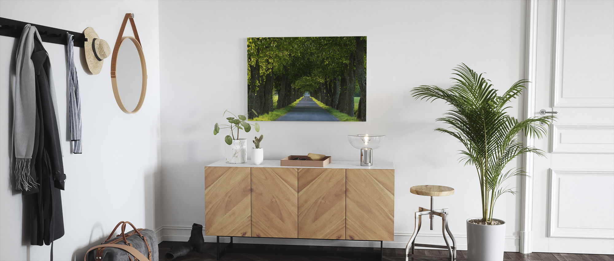 Tree Avenue - Canvas print - Hallway