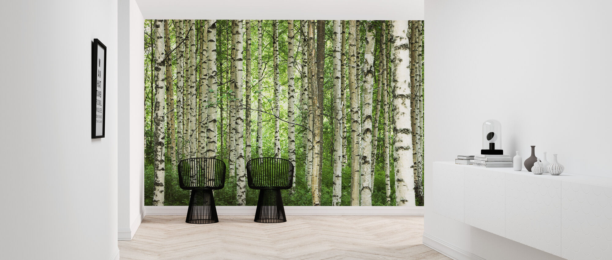 Clear Birch Forest - Wallpaper - Hallway