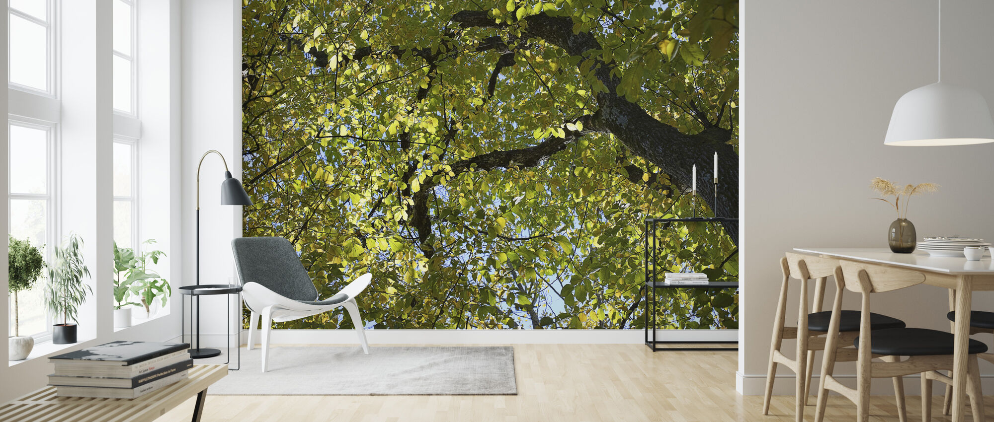 Tree Branches - Wallpaper - Living Room